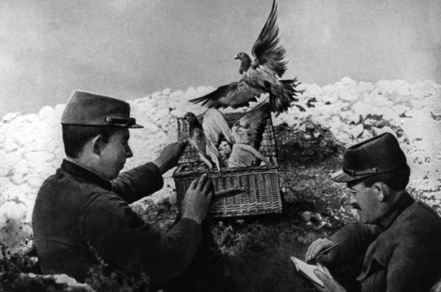 "Bronze of WWI ""Messenger"" Greyhound at 1stdibs |Wwi Messenger"