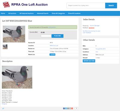 auction-website